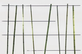 Bamboo Forest: il bamboo diventa design by Poetic Lab