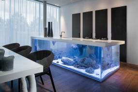 Un 'oceano' in miniatura intrappolato sotto la cucina
