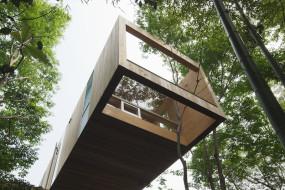 +node house, dimorare lassù tra gli alberi…