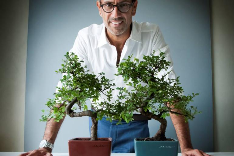 Andrea castrignano per 39 un bonsai per anlaid 39 - Andrea castrignano interior designer ...