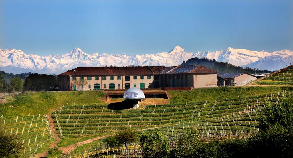 cantine-vinicole-in-piemonte-Acino