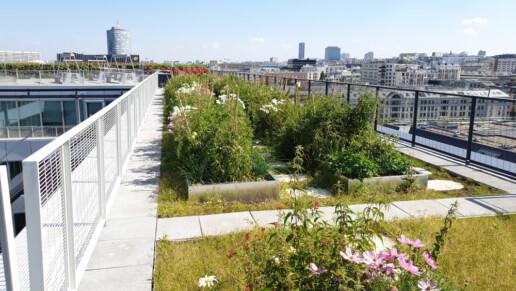architettura-green-arte-charpentier-architects
