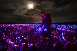 Altre immagini di Grow, l'installazione illuminotecnica di Daan Roosegaarde
